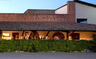 Lungarotti experience 2